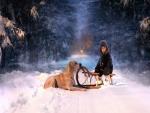Perro junto a un niño sobre un trineo