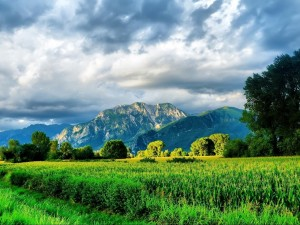 Día nublado en el campo y las montañas