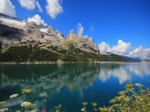 Postal: Lago Fedaia (Italia)