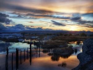 Reflexión en el campo inundado