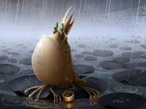 Postal: Príncipe convertido en rana bajo la lluvia