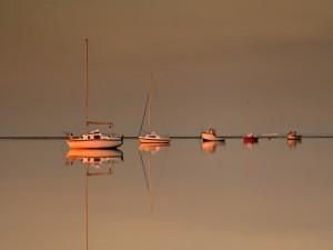 Postal: Barcos en un mar en calma