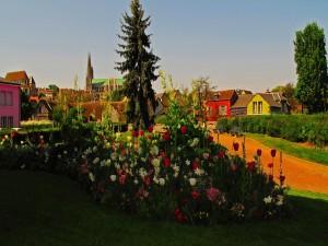 Postal: Flores en un jardín