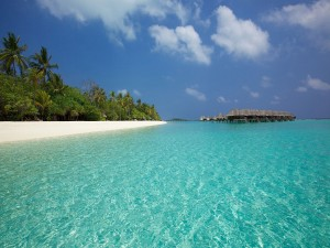 Postal: Vacaciones en una hermosa playa