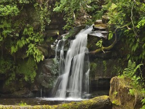 Postal: Una cascada en un bello entorno