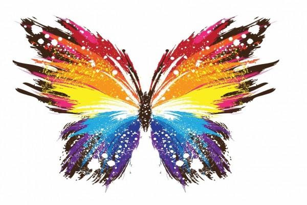 Mariposa colorida