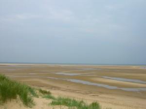 Postal: Playa en marea baja
