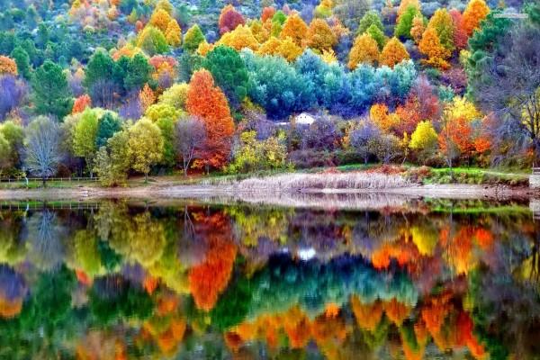 Paisaje hermoso de otoño