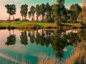 Postal: Lago en el que se reflejan los árboles y el cielo