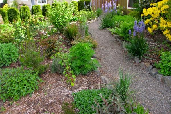 Bonito jardín con plantas y flores