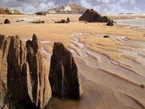 Rocas en una playa de arena