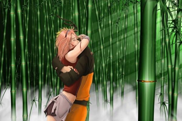 Sakura Haruno y Naruto Uzumaki abrazados