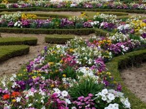 Postal: Jardín con una gran variedad de flores