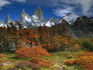 Postal: Monte Fitz Roy, Patagonia (Argentina)