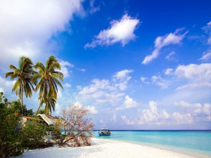 Postal: Barca junto a una bonita playa de arena blanca