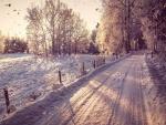 Copos de nieve cayendo sobre un camino