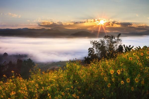 El sol brillando sobre una densa capa de niebla