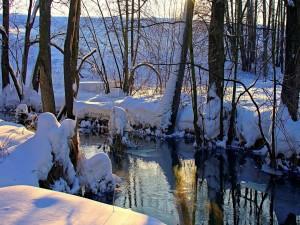 Invierno en el río