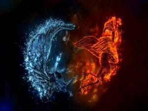 Aves de agua y fuego