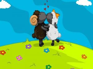 Corderos besándose