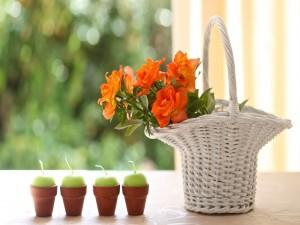 Velas y cesta con flores
