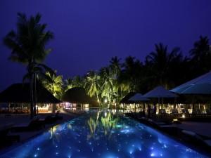 Piscina iluminada entre palmeras