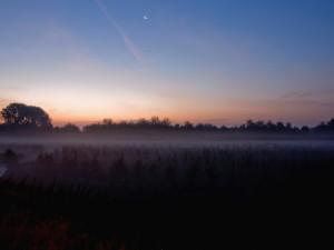 La luna en el cielo en un bello amanecer