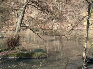 Postal: Río en el Valle de Chevreuse  (Francia)
