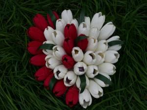 Postal: Tulipanes rellenos de bombones para regalar por San Valentín