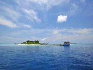 Postal: Turistas llegando a una preciosa isla