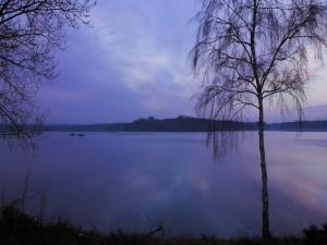 Un cielo al amanecer