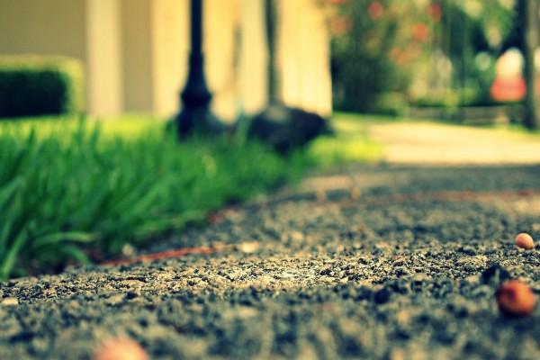 Césped junto al asfalto