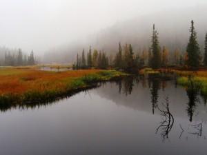 Postal: Niebla en un paisaje otoñal