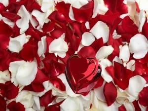 Postal: Un corazón sobre pétalos de rosas