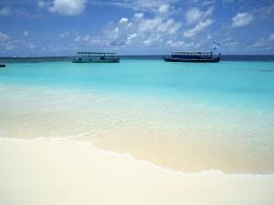 Postal: Barcas vistas desde la orilla