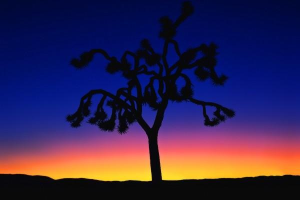 Bellos colores del crepúsculo en un desierto