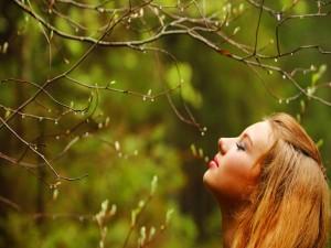 Postal: Chica junto a las ramas de un árbol