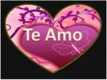 """""""Te Amo"""" mensaje para el Día de San Valentín"""