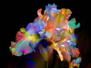 Postal: Flore en 3D