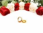 Rosas rojas y blancas junto a unos anillos