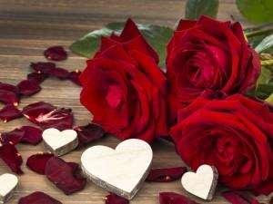 Postal: Rosa rojas, pétalos y corazones