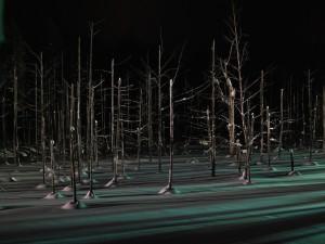 Postal: Triste invierno en el bosque