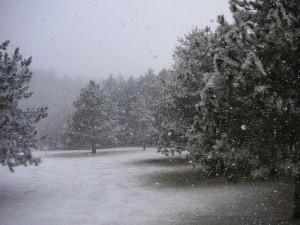 Fuerte nevada en el campo