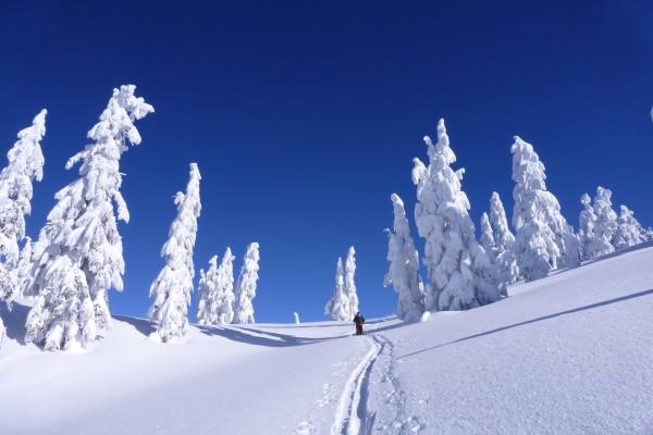 Caminando por un paisaje cubierto de nieve