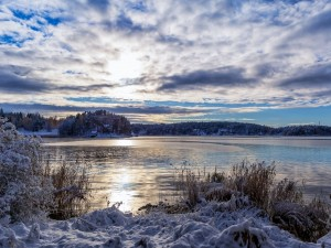 Día de invierno en el lago