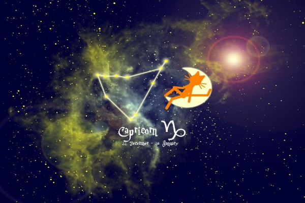 Gato en el horóscopo de Capricornio