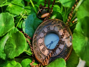 Hermoso reloj sobre unas hojas verdes