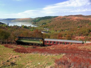 Viaje en tren por un paraje natural