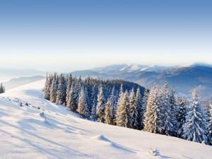 Hermosas vistas desde una montaña cubierta de nieve