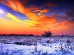 Hermoso cielo sobre un paisaje nevado